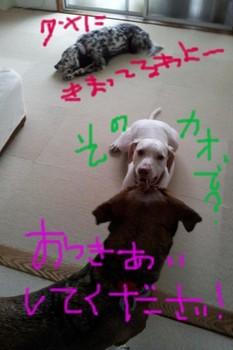 2011-10-05 08.56.30.jpg