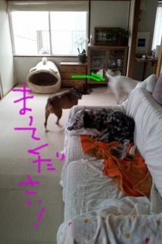 2011-10-05 14.34.04.jpg