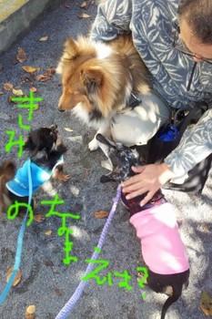 2011-11-16 11.16.01.jpg