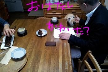 2011-12-01 14.09.05.jpg