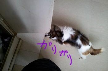 2012-03-30 09.21.26.jpg