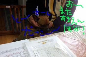 2012-04-01 11.28.50.jpg