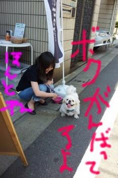 2012-05-27 14.12.01.jpg