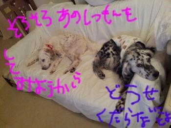2013-04-01 23.00.45.jpg