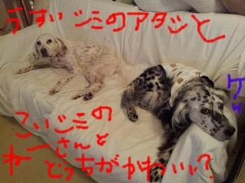 2013-04-01 23.01.04.jpg