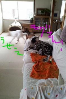 2011-10-05 14.33.48.jpg