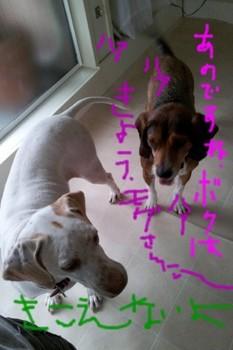 2011-10-05 14.36.13.jpg