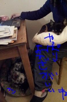 2011-11-30 23.31.47.jpg