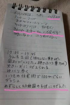 2012-07-01 17.40.27.jpg