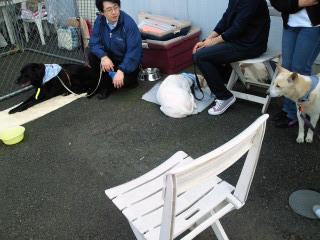 4月鎌倉里親会 (2).jpg